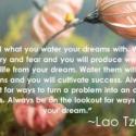 Watering Your Dreams